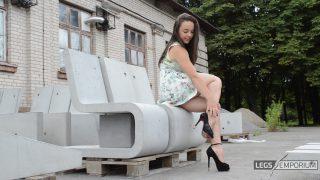Alina - Industrial Strength Shapely Legs 2_5