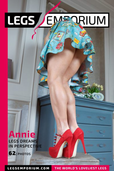 Annie - Legs Dreams in Perspective COVER